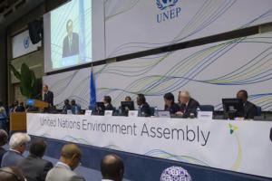 Imagem 1 – A Assembleia do Meio Ambiente da ONU
