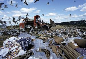 """Imagem 2 - Deposição de lixo urbano à """"céu aberto"""""""